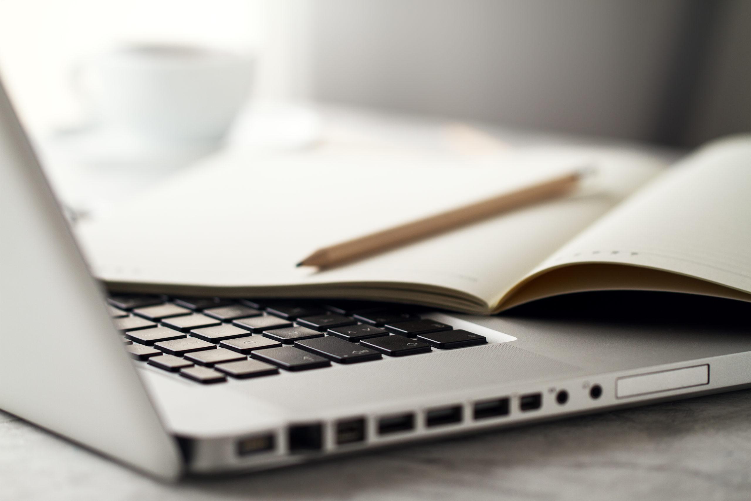 Как выглядят ноутбуки Asus и HP